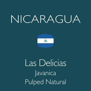 ニカラグア ラスデリシアス ジャバニカ パルプドナチュラル