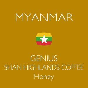 ミャンマー ジーニアス シャンハイランド ハニー